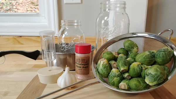 Fermented Brussel Sprout Supplies