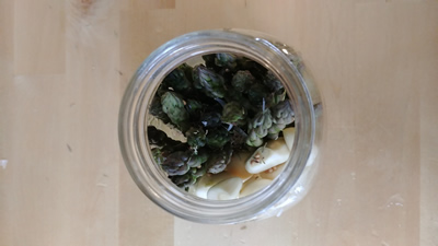 How to Make Fermented Asparagus