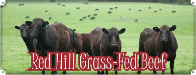Red Hill Grass Fed Beef